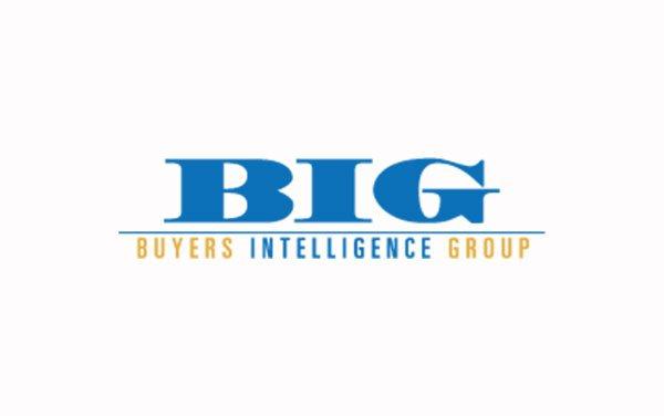 BIGintel-Logo-main